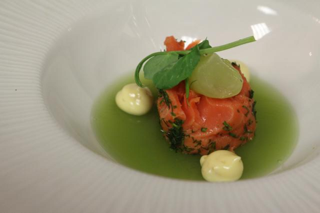 salmonmicuit